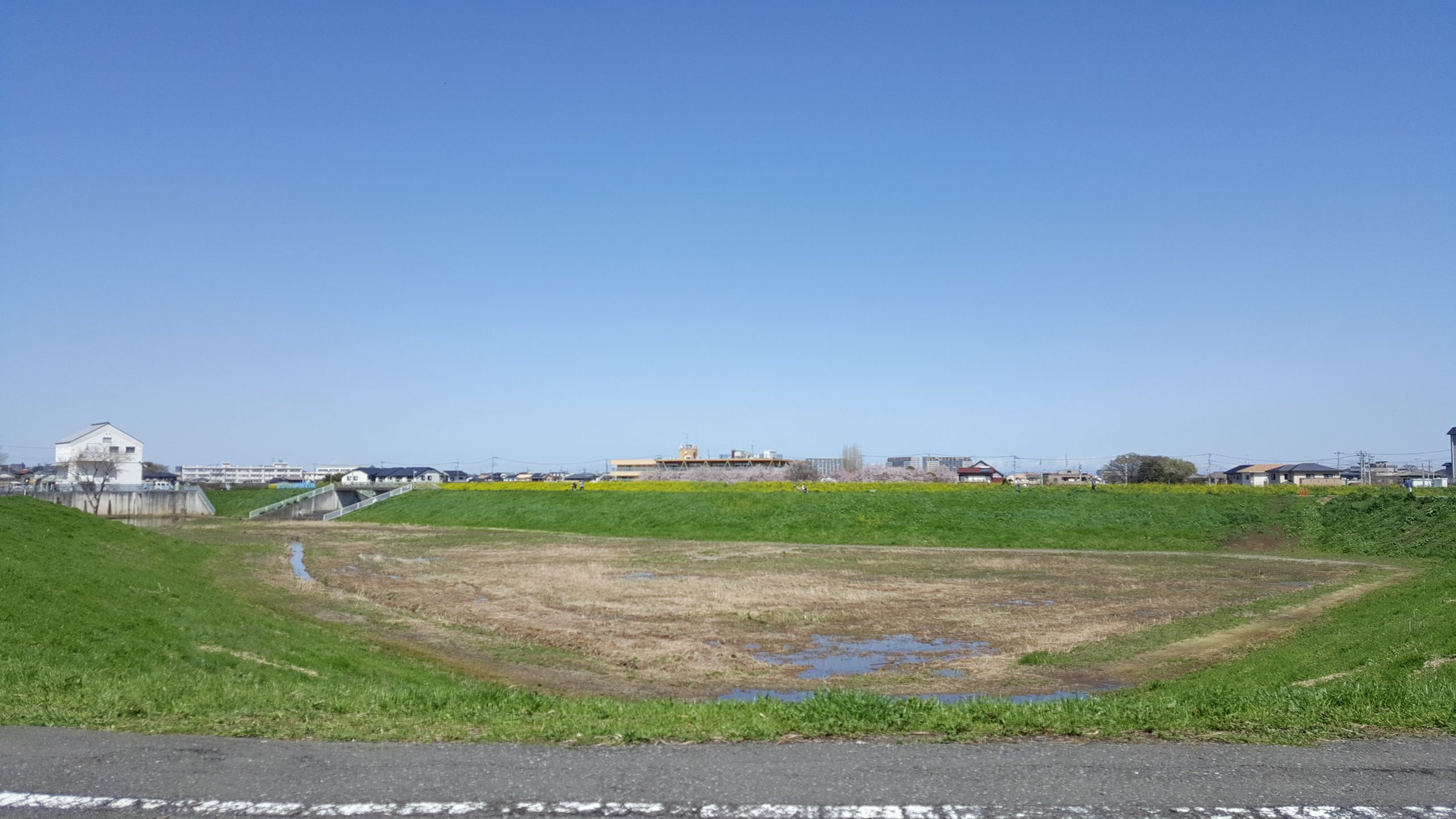 川越市寺尾遊水池 遊歩道